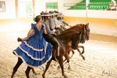 Ritmo a Caballo & Andalusian night El Ranchito